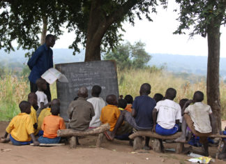 Students study under a tree at Obira Primary School