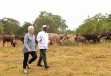 File photo: US Ambassador Deborah Malac visited President Museveni at his country home in Rwakitura
