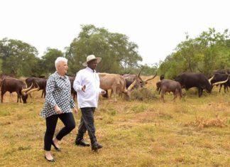 File photo: US Ambassador Deborah Malac visited President Museveni at his country home in Rwakitura
