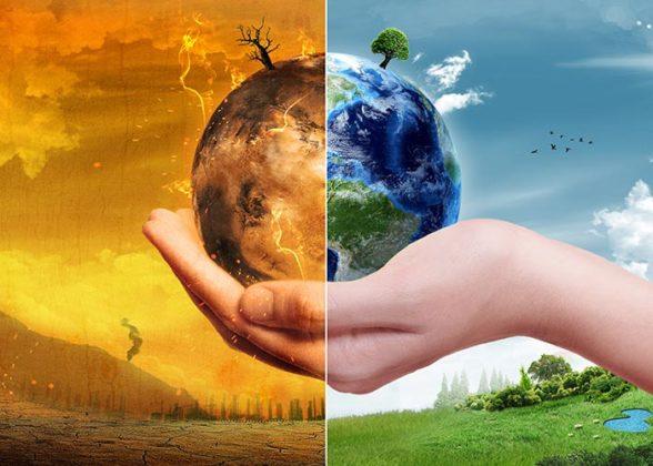 tackle global warming essay