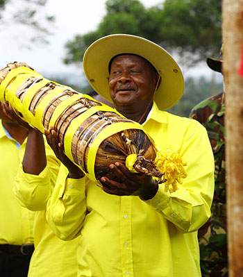 Museveni carrying a gift donated to him by supporters in Kamwenge