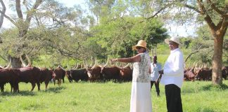 File photo: President Museveni and his Wife Janet